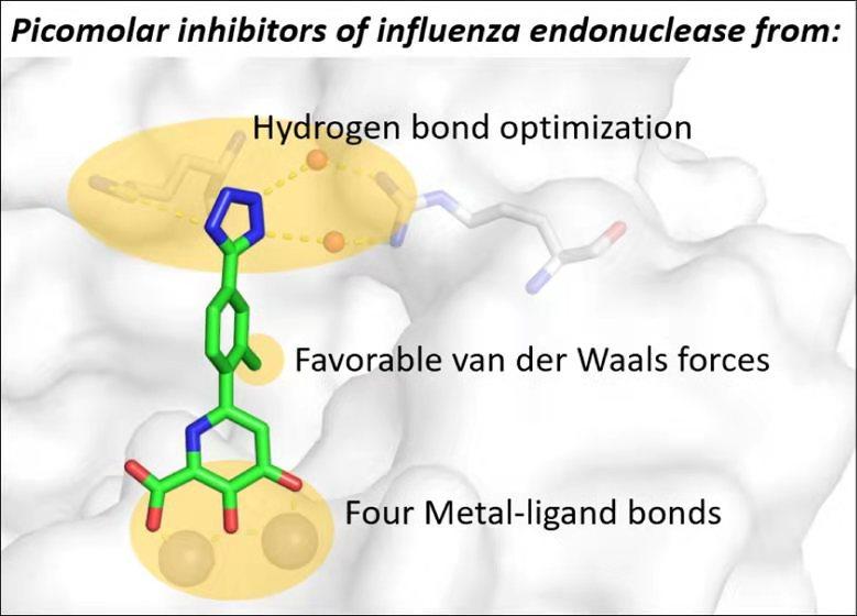 甲型流感病毒核酸内切酶抑制剂示意图