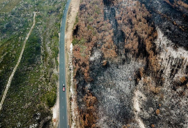 """澳大利亚林火肆虐,专家称与全球变暖""""相吻合"""""""