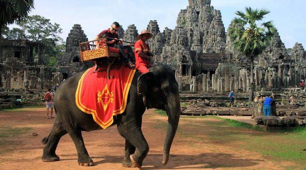 2020年起,吴哥窟禁止骑大象