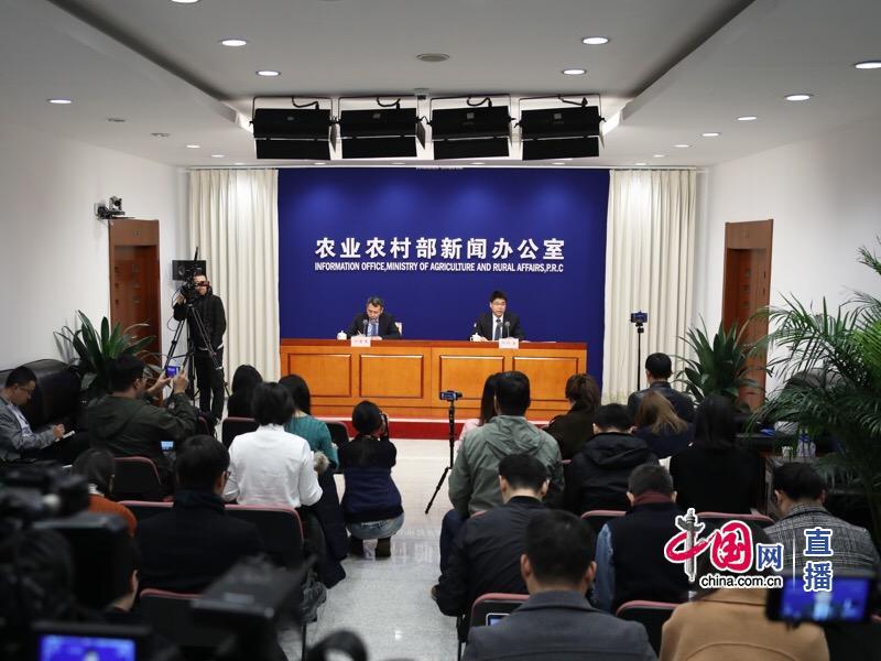 农业农村部就10月份生猪生产形势举行新闻发布会。 中国网 图