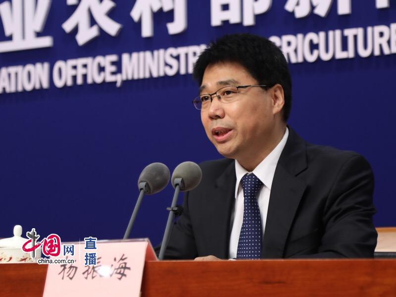 农业农村部畜牧兽医局局长杨振海回答记者提问。 中国网 图