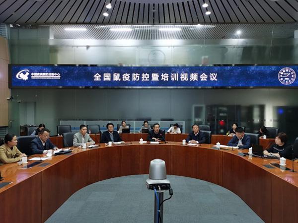 中国疾控中心组织鼠疫防控视频会议,提出三点要求