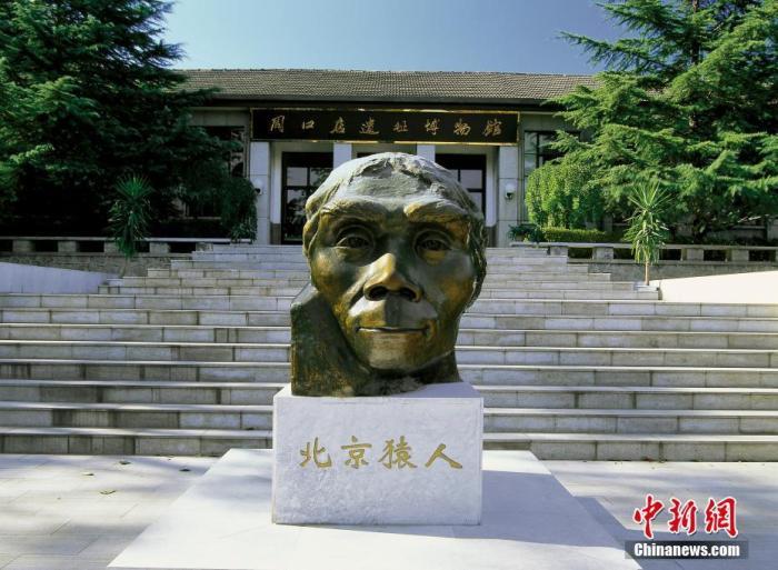 资料图:北京房山区,周口店遗址博物馆前的北京猿人铜像。