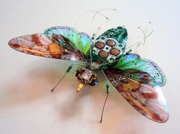 电脑中废弃的电路板是我主要的昆虫雕塑材料