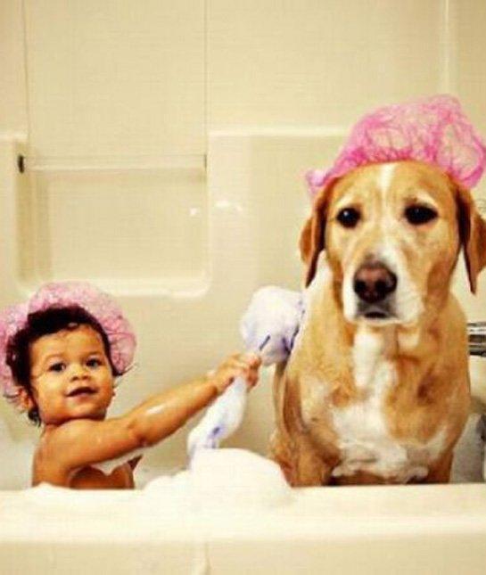 你没了我可怎么走路呀?这只狗狗和宝宝的感情非常非常深,和这个小浴缸一样深。反正能帮忙洗澡的妈妈通通叫来了,不管是谁。轮到我了!轮到我了!这只小猫的动作太喵了个咪地有说服力了!家里有一只小狗很棒,有四只小狗真是宇宙无敌超级棒!
