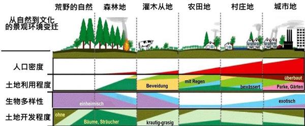 """""""生命树""""与""""自然土地生态系统""""这两款模型"""