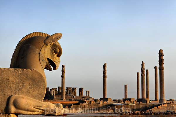 伊朗人与兽_这与伊朗人与阿拉伯人历史性的竞争有关.