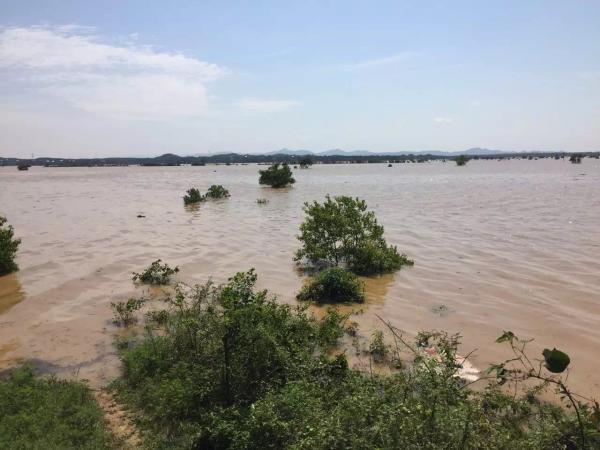 正在视频直播滨田河堤溃口现场情况.