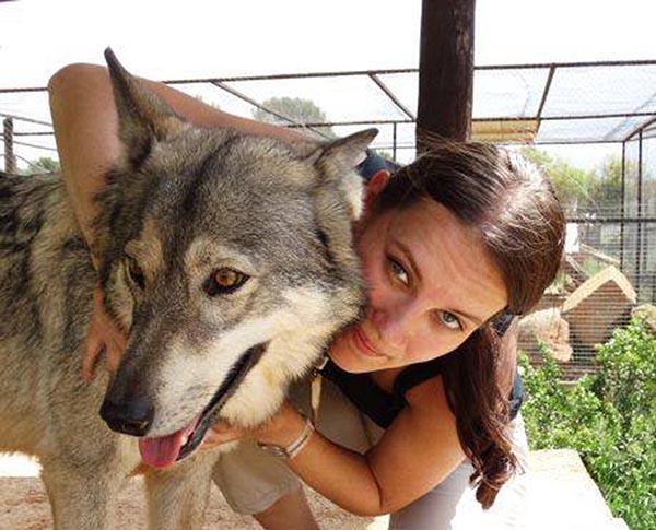 图像|美女和野兽
