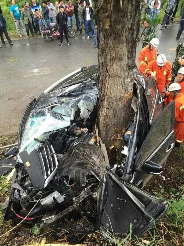 宝骏560撞树后竟被树劈开,事故原因仍在调查中