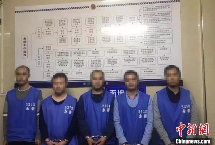 盘某等人已被警方依法刑事拘留 中新网 图
