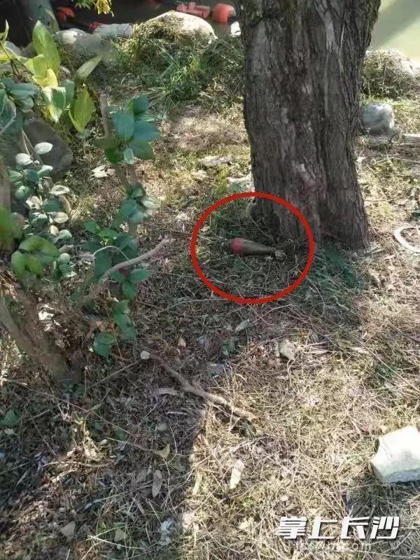 现场发现的炮弹。
