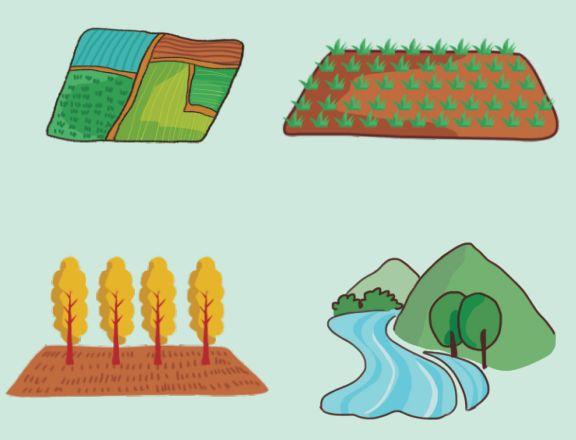 土壤环保小百科(4)|治理土壤污染,地方政府部门职责如何划分?: