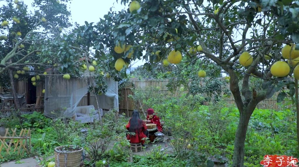 一个在四川某乡村布置农家小院,种瓜养花、劈柴做饭的年轻女孩靠单纯的生活记录短片成为了全世界知名网红。 本文图片均来自李子柒个人微博视频截图
