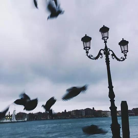 想看看一個沒有化妝的威尼斯,也許需要在一個多霧的清晨早起,悄悄觀察這個老太太一樣的城市如何醒來。我喜歡威尼斯,因為每時每刻他都不一樣