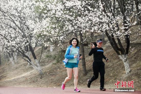奥森公园平面图_扎心!近半90后日行不足5千步,为啥你运动量不如你妈