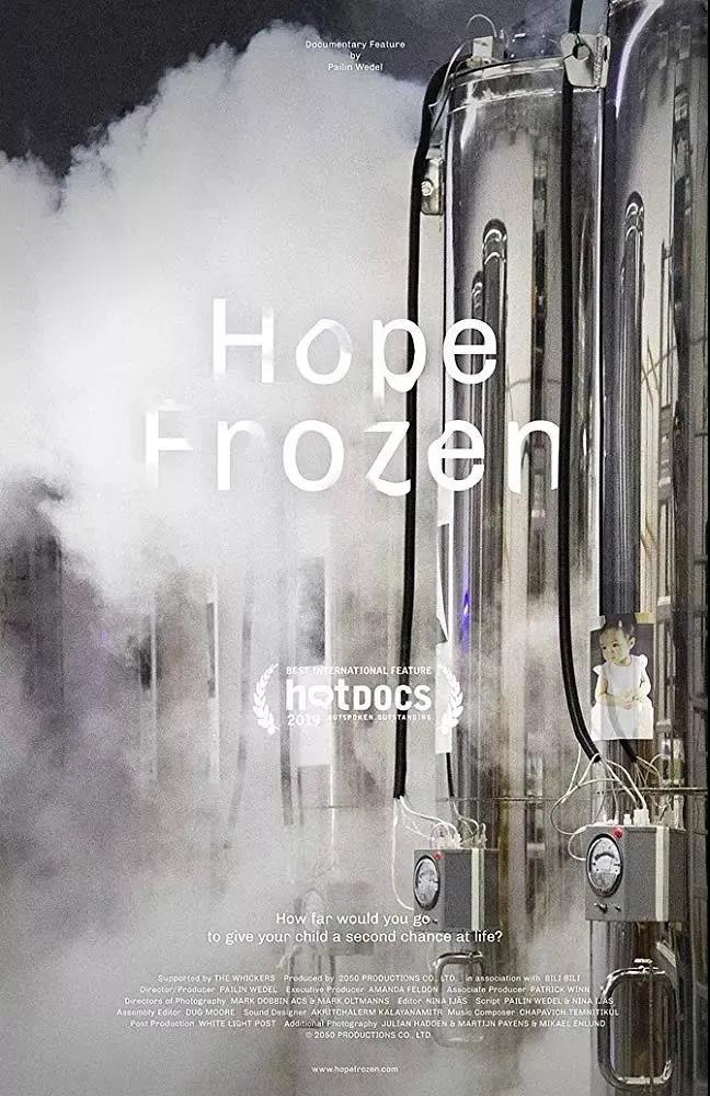 《冻结的希望》海报