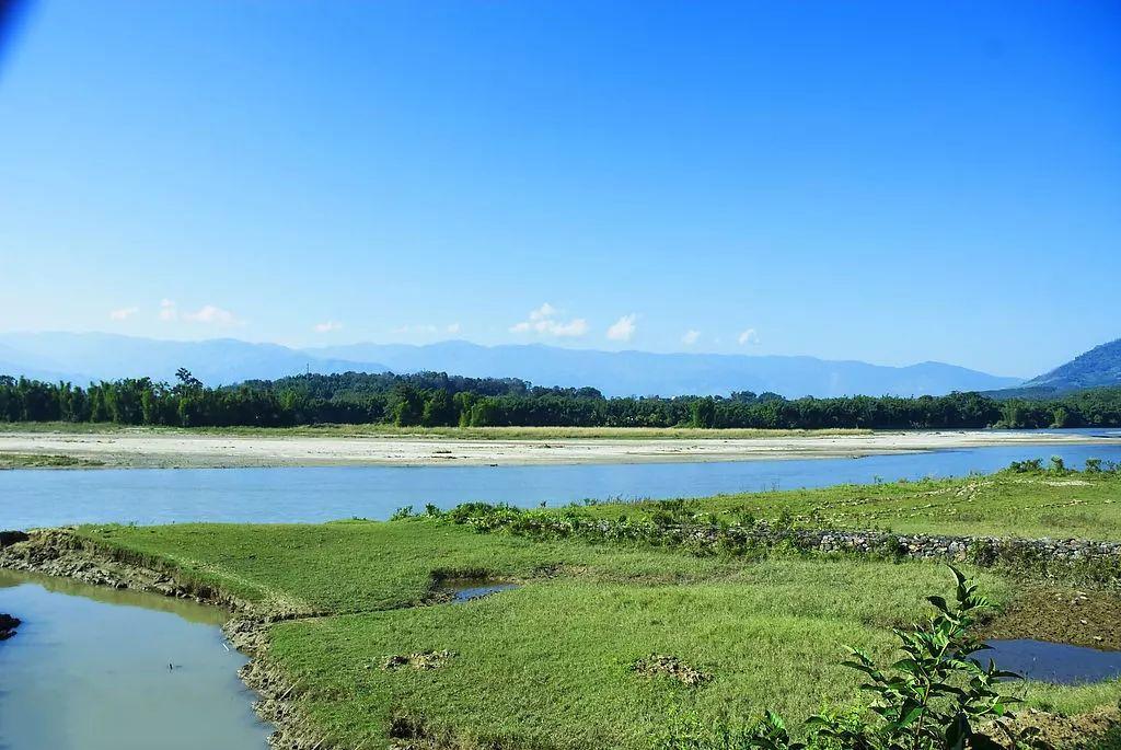 云南盈江:奏響生態和諧曲 生態美景變經濟效益