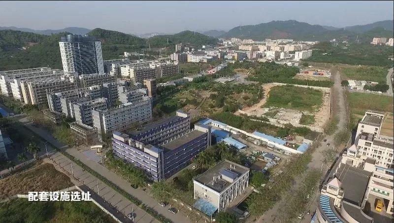 关注!中山大学深圳校区明年启用 第一批学生约