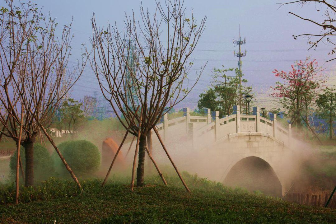 烟霞桥、清韵亭...沙口生态园竣工!面积相当于11个足球场