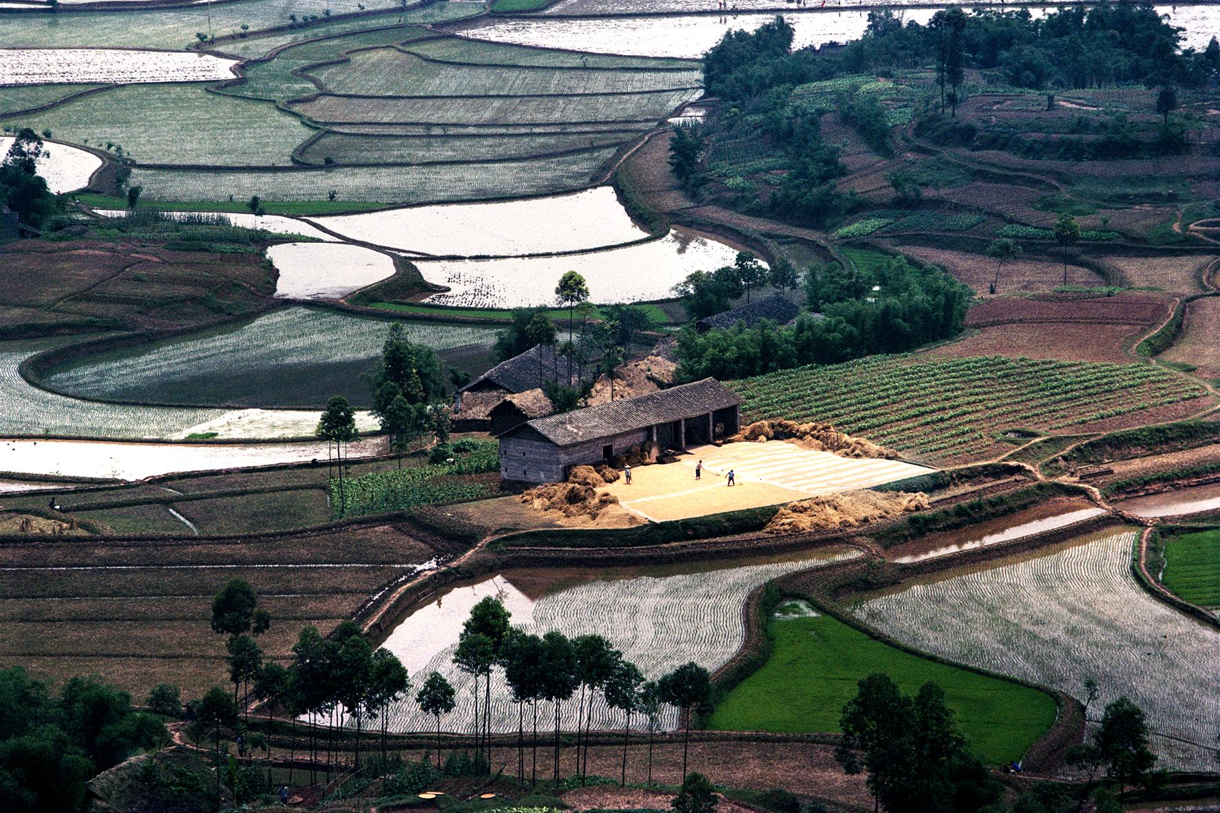 八十年代的南方乡村田野。