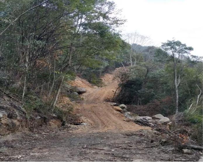 武夷山国家公园管理局:林地被农夫山泉毁后划入公园