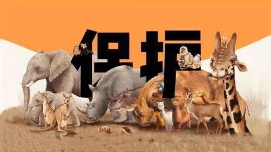 保护野生动物资源,宁乡市森林公安局在行动!