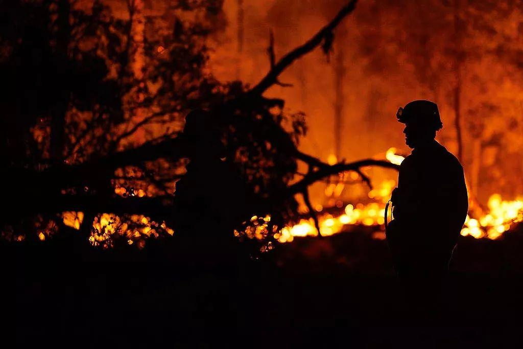 教你赚钱:从澳大利亚森林大火背后,一窥全球气候变化危