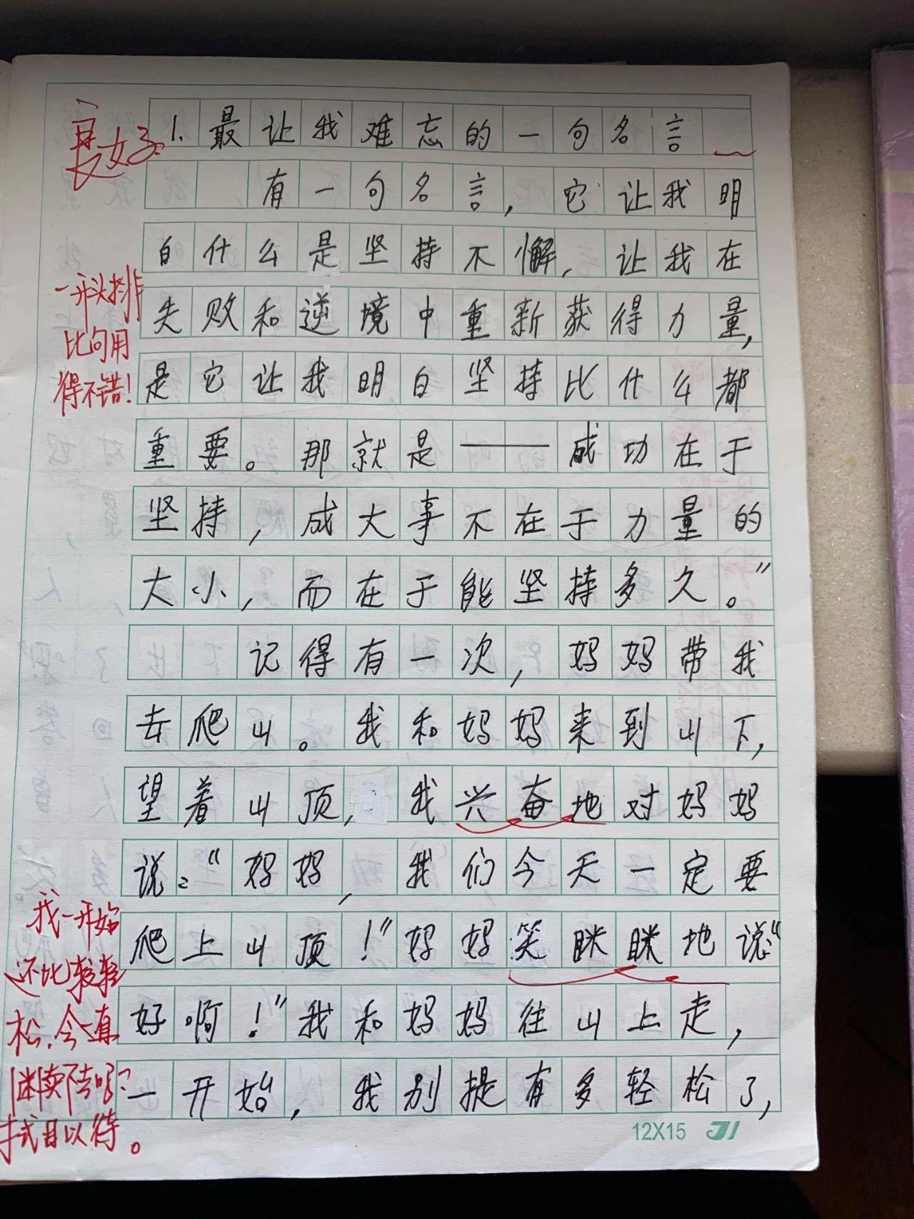 陈瑾的作文