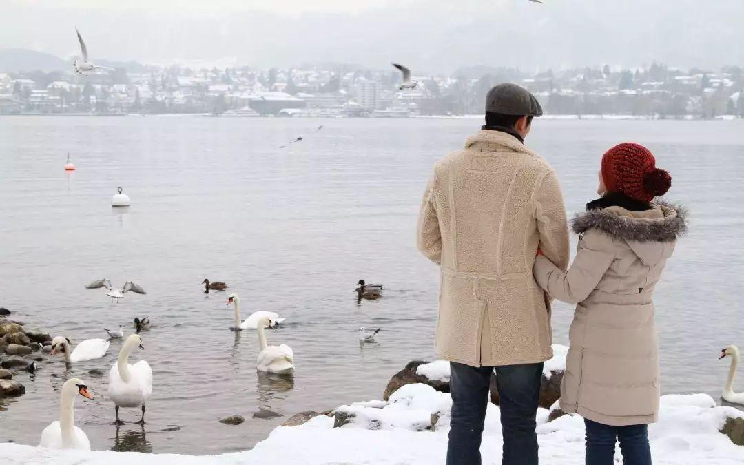 电视剧《沥川往事》中,男女主人公在苏黎世湖边看天鹅成为经典的一幕