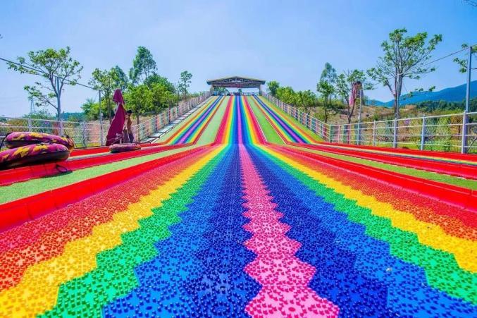 珠三角游客看过来!春节就来佛山这个花海打卡