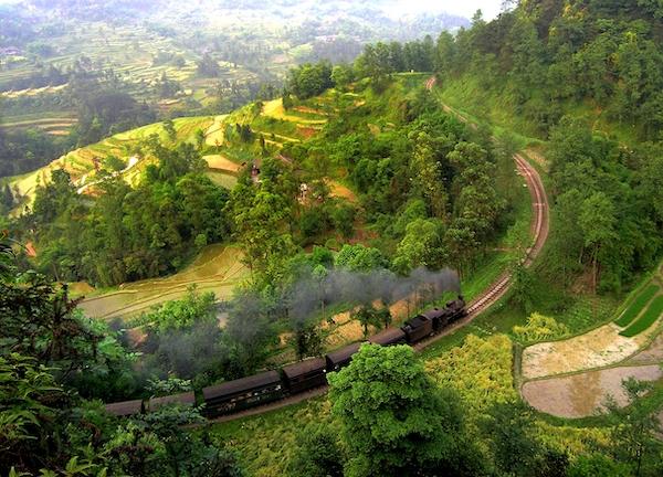 小火车行驶在菜子坝的路段