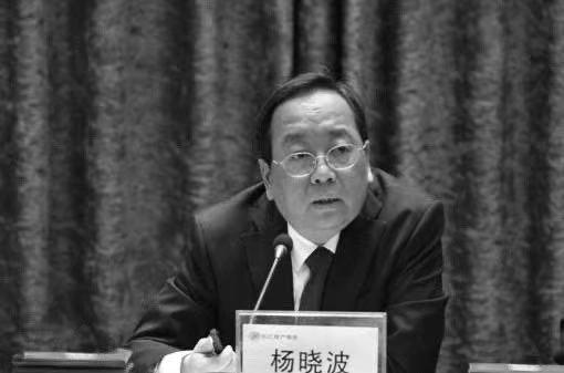 媒体:长江财险董事长、原黄石市长杨晓波近日因重症肺炎去世