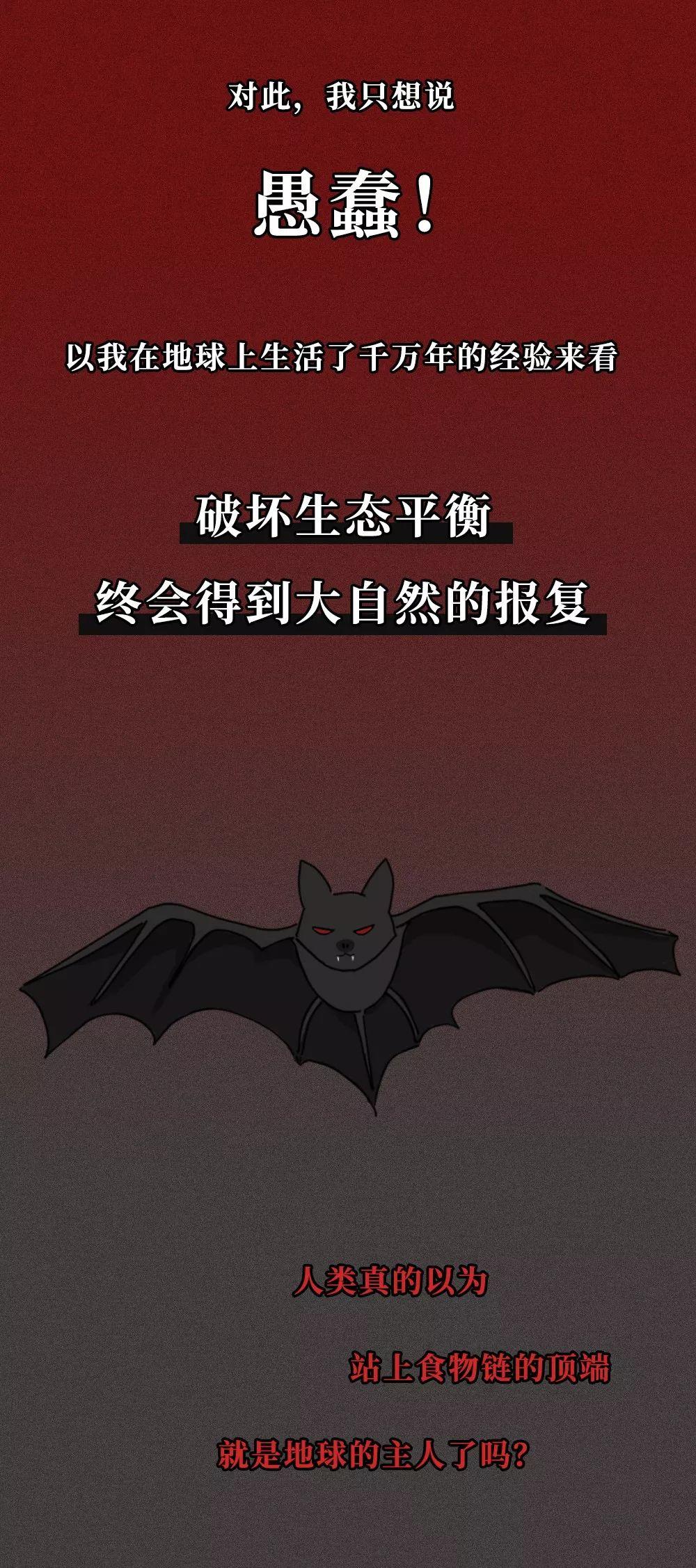一只蝙蝠的自述在朋友圈火了:千万不要再吃野味了! 新消费