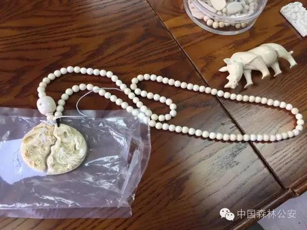 吉林侦破特大贩卖野生象牙制品案:缴获象牙制品2360件 - 梅思特 - 你拥有很多,而我,只有你。。。