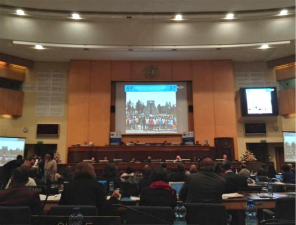 联合国教科文组织保护非物质文化遗产政府间委员会