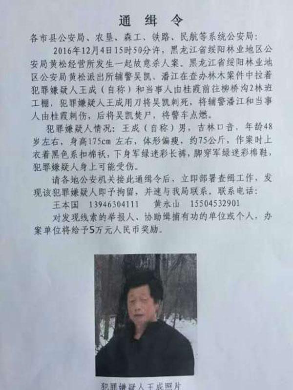 黑龙江一辅警办案被刺死并焚尸、警车被烧,嫌疑人已落网_广州本地宝新闻频道