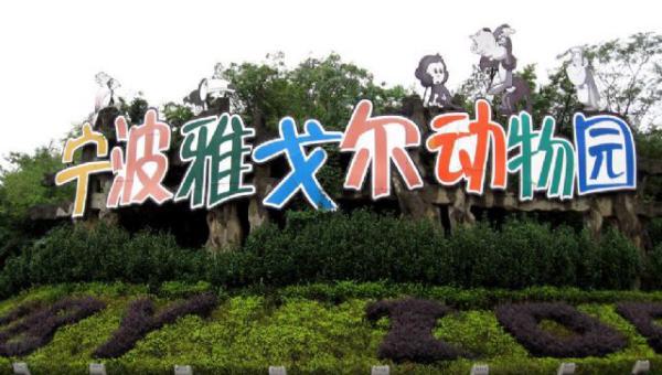 宁波通报动物园老虎伤人:死亡游客未买票