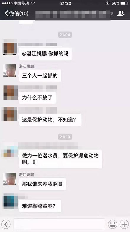广东潜水员网上声称捕到二级保护动物鲸鲨将卖出,当地正调查 - 梅思特 - 你拥有很多,而我,只有你。。。
