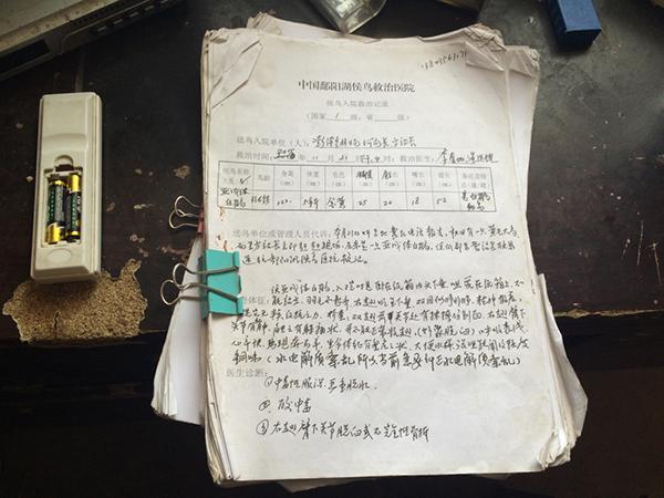 江西七旬候鸟医生:为每一只病鸟写病历,救治超5万只 - 梅思特 - 你拥有很多,而我,只有你。。。