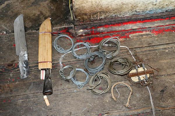 黑龙江破获特大濒危野生动物被捕杀案,嫌疑人自制绳套捕黑熊 - 梅思特 - 你拥有很多,而我,只有你。。。