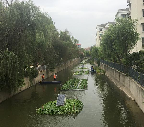 【砥砺奋进的五年】14名河长对话市民:静安将打造亲水空间