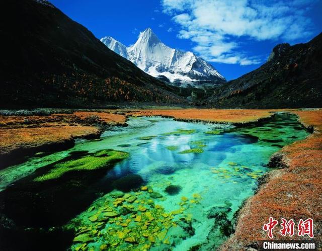 甘孜州稻城亚丁景区。 中新网 图