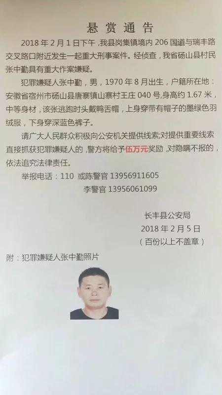安徽长丰:男子街头杀害一对女童装
