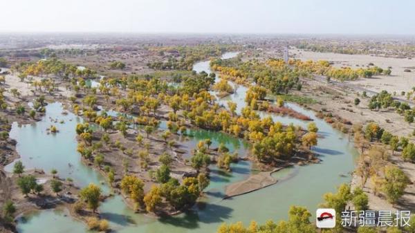 """新疆去年生态输水破纪录,一年为南疆""""补给"""""""
