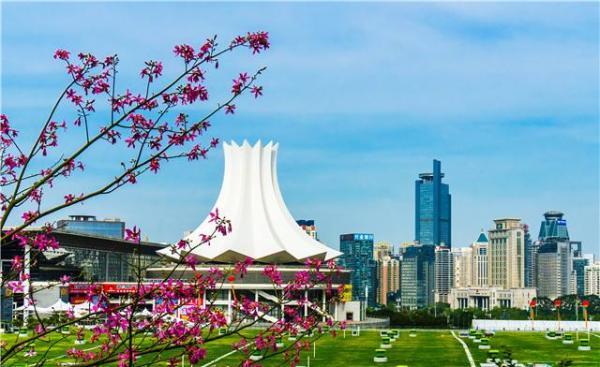 泛珠高铁经济带|南宁向东:期望引领广西融入粤港澳大湾区