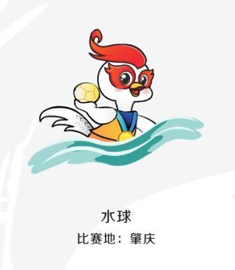 茂名水球队首度还有省运!亮相哪些项赛事上.游泳班介绍图片