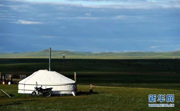 锡林郭勒盟乌拉盖管理区贺斯格乌拉牧场的草原景色(7月25日摄)